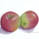 髙栁早苗:リンゴ