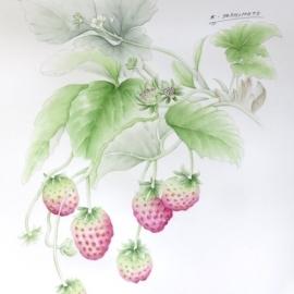 イチゴ(吉本一彦)
