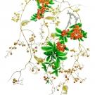 吉本一彦201801サオトメグサの実とタチバナモドキ