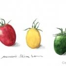 ミニトマト(清水みのり)