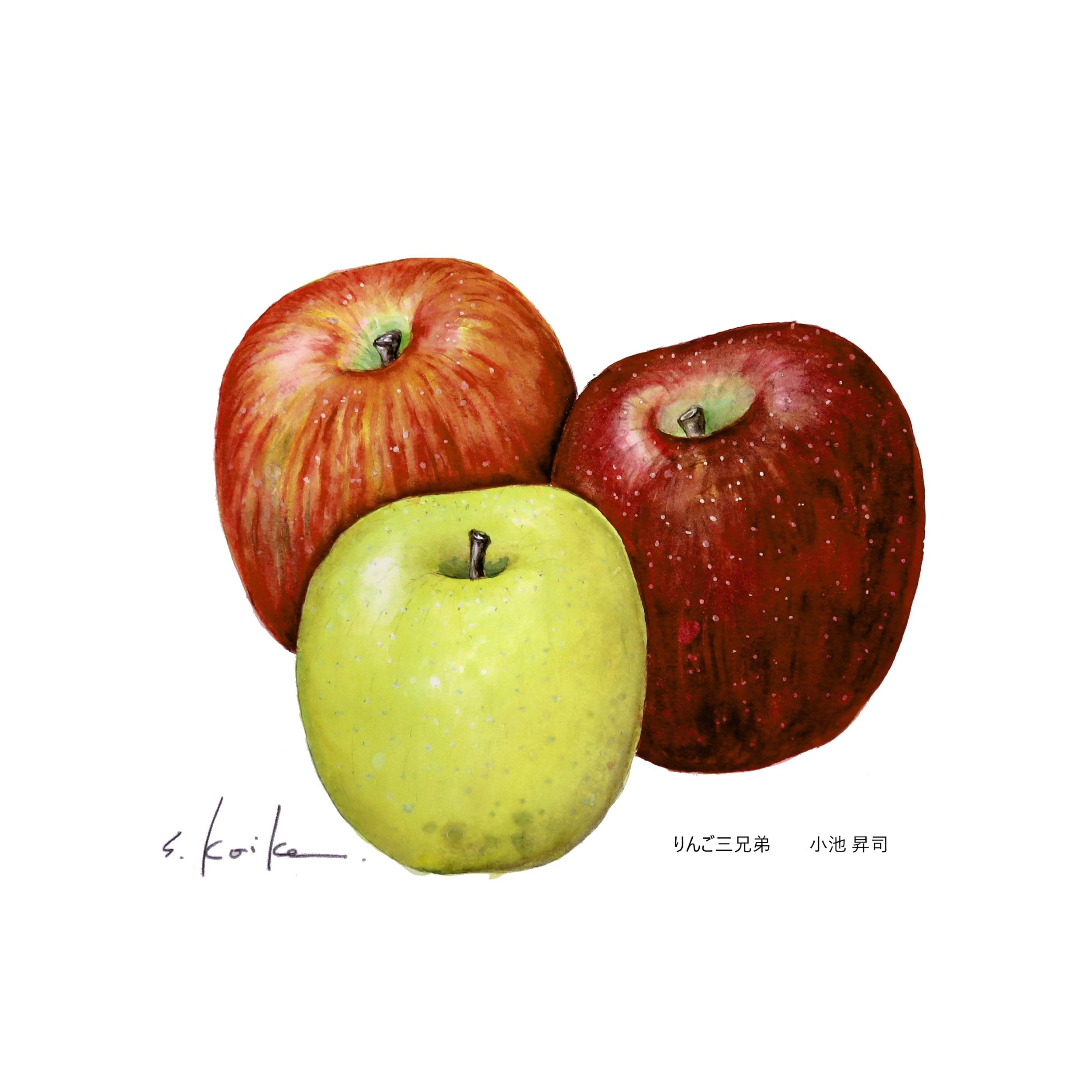 小池りんご三兄弟201711-500