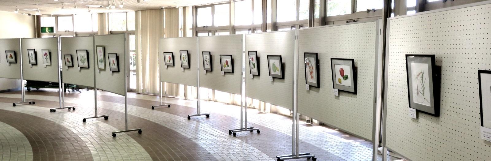 平成30年グリーンピア春日井ボタニカルアート(植物画教室)卒業作品展