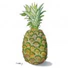 吉岡昌子,パイナップル