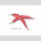 トウガラシ:長谷川聖恵