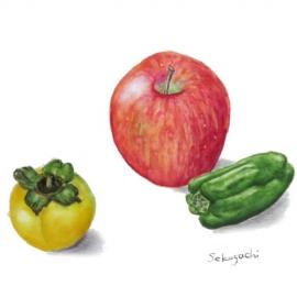 世古口寛子:リンゴ、他