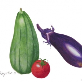 岡田香代子:夏野菜