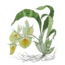 24ceae30c035b270505c50999b325562